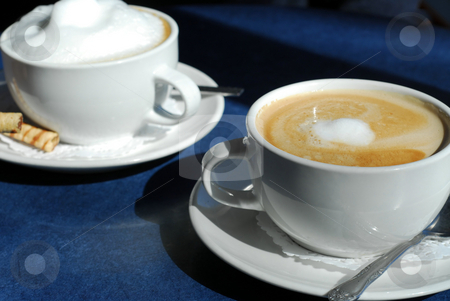 Cappuccino and Latte stock photo, Cappuccino and Latte in cups with saucers by Elena Elisseeva