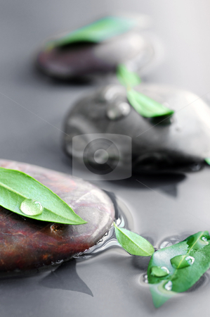 Stones in water stock photo, Stones submerged in water with green leaves and water drops by Elena Elisseeva