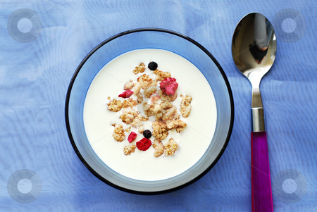 Breakfast cereal stock photo, Breakfast cereal in a bowl by Elena Elisseeva