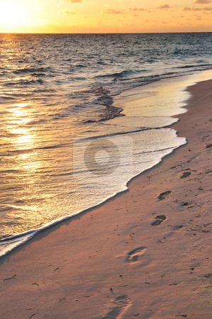 Footprints on sandy beach at sunrise stock photo, Footprints on sandy tropical beach at sunrise by Elena Elisseeva