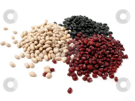 Dry beans stock photo, Dry white, red, and black beans on white background by Elena Elisseeva