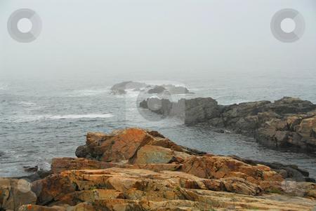 Rocky coast in Maine stock photo, Rocky coast of Atlantic ocean in Maine, USA by Elena Elisseeva