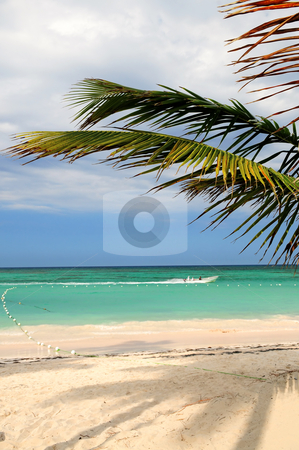Tropical beach stock photo, Tropical sandy beach of a Caribbean island by Elena Elisseeva