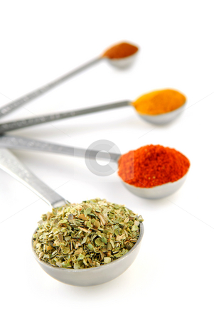 Spices in measuring spoons stock photo, Assorted spices in metal measuring spoons on white background by Elena Elisseeva