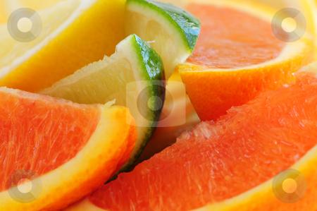 Citrus wedges stock photo, Wedges of assorted citrus fruits lemon orange and lime by Elena Elisseeva