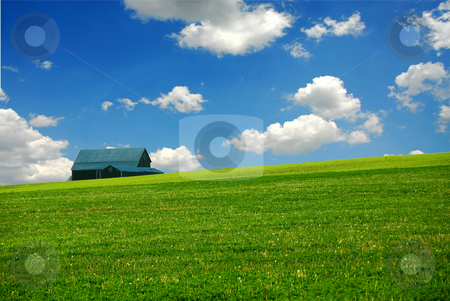 Barn in farm field stock photo, Barn in summer farm field,  deep blue sky by Elena Elisseeva
