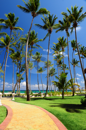 Tropical resort stock photo, Path leading to a beach on tropical resort by Elena Elisseeva