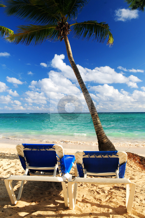 Sandy beach of tropical resort stock photo, Sandy beach of tropical resort with palm trees and two reclining chairs by Elena Elisseeva