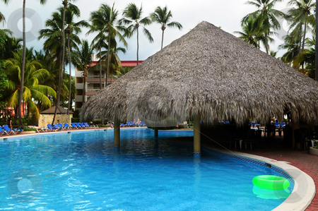 Swimming pool stock photo, Swimming pool with swim up bar at tropical resort by Elena Elisseeva