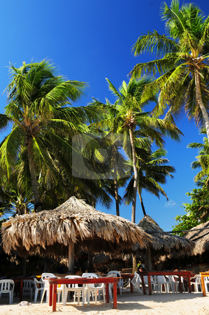 Restaurant on tropical beach stock photo, Outdoor restaurant on tropical beach with palm trees by Elena Elisseeva