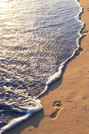 Tropical beach with footprints stock photo, Tropical sandy beach with footprints and ocean wave by Elena Elisseeva