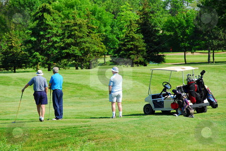 Seniors golfing stock photo, Three senior men on golf course with a golf cart by Elena Elisseeva