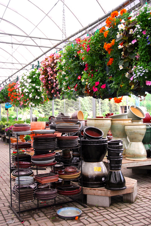 Greenhouse stock photo, Flowers and ceramic pots for sale in a greenhouse by Elena Elisseeva