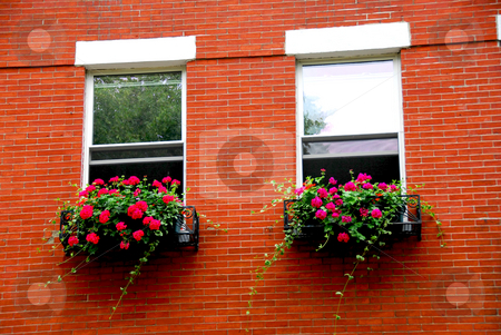 Boston house fragment stock photo, Fragment of a red brick house in Boston historical North End with wrought iron flower boxes by Elena Elisseeva