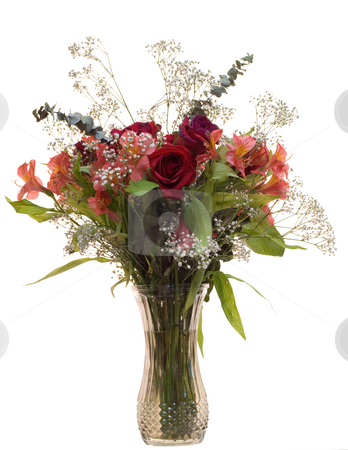 Rose Bouquet stock photo, An isolated bouquet of roses in a vase by Richard Nelson