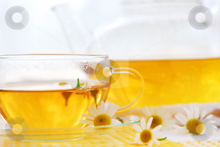 Camomile tea stock photo, Teacup and teapot with herbal soothing camomile tea by Elena Elisseeva