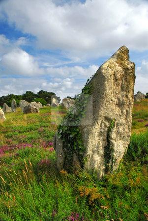 Megalithic monuments in Brittany stock photo, Green vines on prehistoric megalithic monuments menhirs in Carnac area in Brittany, France by Elena Elisseeva