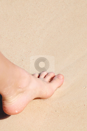 Foot on sandy beach stock photo, Young woman's foot on a sandy beach by Elena Elisseeva