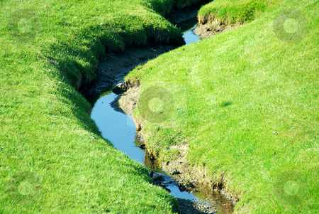 Brook stock photo, Small brook among fresh green summer grass by Elena Elisseeva