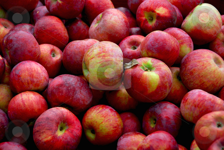 Apples background stock photo, Background of fresh red apples by Elena Elisseeva