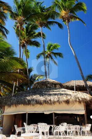 Restaurant on tropical beach stock photo, Outdoor restaurant on tropical beach with palm trees by Elena Elisseeva
