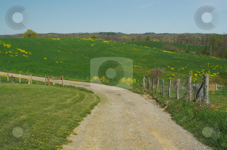 Country road and meadow. stock photo, Country road and meadow on a summer day. by Andy Dean