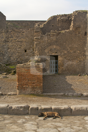 Ancient Ruins Italy stock photo, Cobblestone street and ancient ruins of Pompeii, Italy. by Andy Dean