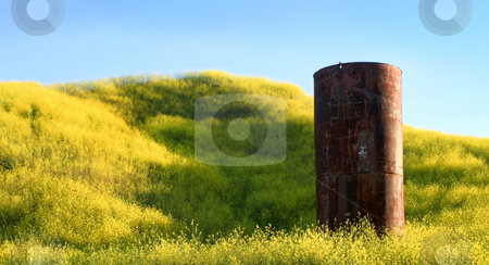 Silo stock photo, Silo in the middle of yellow mustard by Henrik Lehnerer