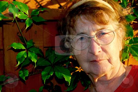 Elderly woman stock photo, Portrait of an elderly woman outside with green vines by Elena Elisseeva