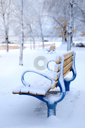 Winter bench stock photo, Winter bench covered with snow in an empty park. Beach area, Toronto, Canada. by Elena Elisseeva