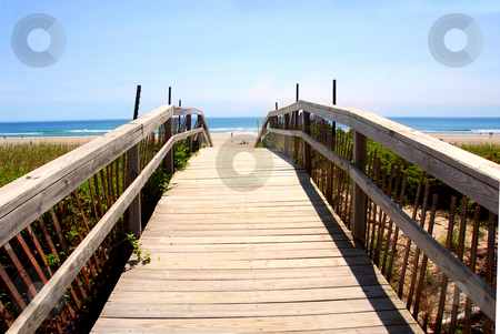 Beach view stock photo, Wooden walkway over dunes with ocean view by Elena Elisseeva