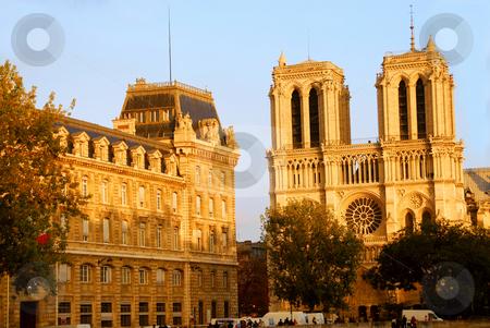 Notre Dame de Paris stock photo, Cathedral of Notre Dame de Paris in evening sun by Elena Elisseeva
