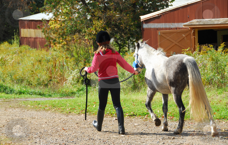 Girl and pony stock photo, Young girl leading a white pony to stable by Elena Elisseeva