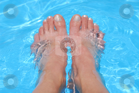 Feet in water stock photo, Woman's feet cooling in clear blue water by Elena Elisseeva