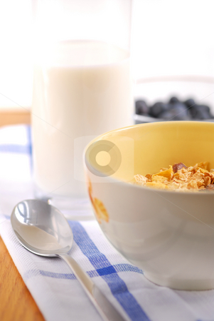 Healthy breakfast stock photo, Healthy breakfast of cereal, milk and blueberries by Elena Elisseeva
