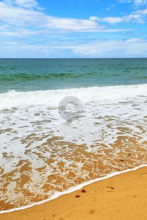 Ocean wave stock photo, Ocean wave advancing on a sandy beach by Elena Elisseeva