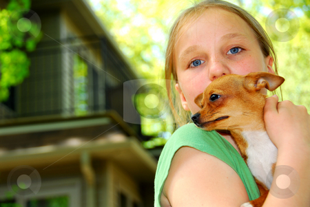Girl with a dog stock photo, Young girl holding a chihuahua puppy outside by Elena Elisseeva