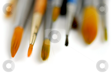Paintbrushes macro stock photo, Macro of paintbrushes on white background by Elena Elisseeva