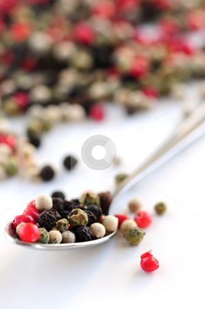 Mixed peppercorns stock photo, Mixed assorted peppercorns on white background macro by Elena Elisseeva