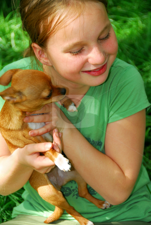 Girl with a dog stock photo, Smiling young girl holding a chihuahua puppy (who just licked her:)) by Elena Elisseeva