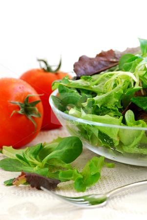 Baby greens and tomatoes stock photo, Fresh baby greens salad and tomatoes on white background by Elena Elisseeva