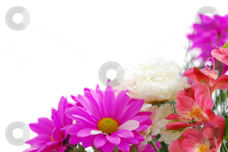 Bouquet stock photo, Bouquet of fresh flowers on white background with copy space by Elena Elisseeva