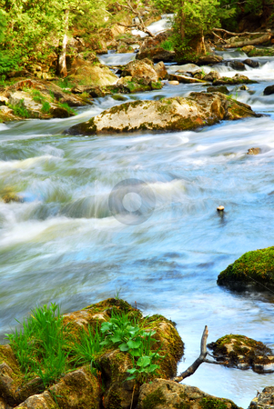 River rapids stock photo, Water rushing among rocks in river rapids in Ontario Canada by Elena Elisseeva
