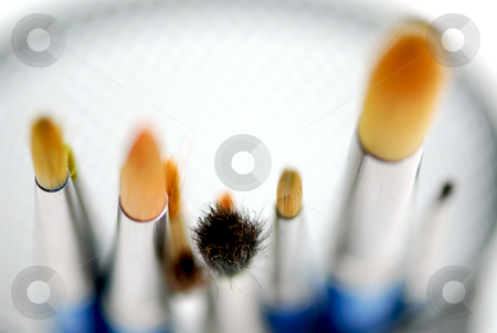 Paintbrushes macro stock photo, Macro of paintbrushes on white background top view by Elena Elisseeva