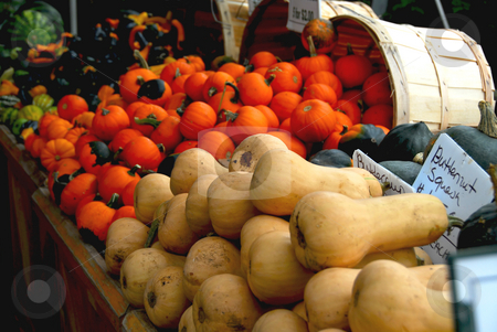 Fall market stock photo, Fall farmers market by Elena Elisseeva