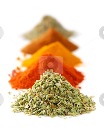 Spices stock photo, Heaps of various ground spices on white background by Elena Elisseeva