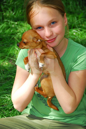 Girl with a dog stock photo, Smiling young girl holding a chihuahua puppy by Elena Elisseeva