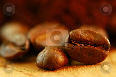 Coffee beans stock photo, Extreme macro image of gourmet coffee beans by Elena Elisseeva