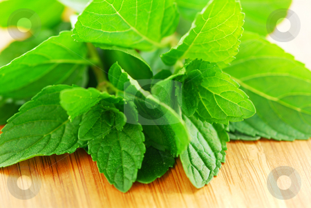 Mint sprigs stock photo, Fresh mint sprigs on wooden cutting board by Elena Elisseeva