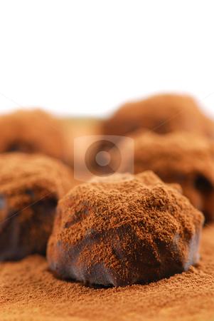 Chocolate truffles stock photo, Macro of dark chocolate truffles sprinkled with cocoa powder with white copy space by Elena Elisseeva